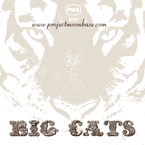 PMB079 Big Cats