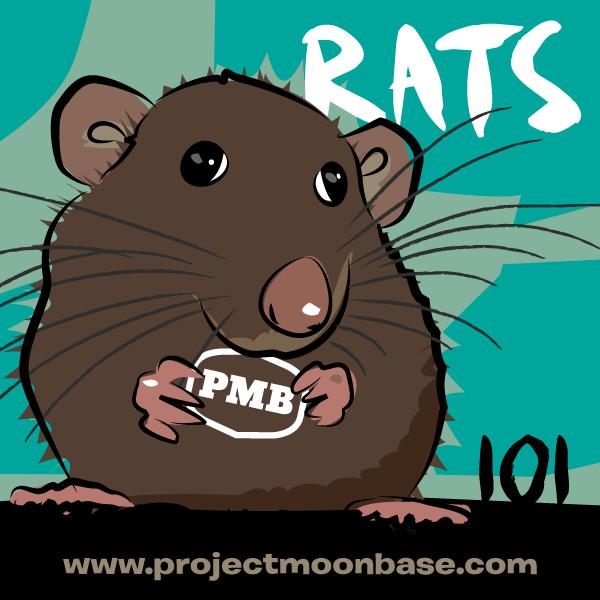 PMB101 Rats