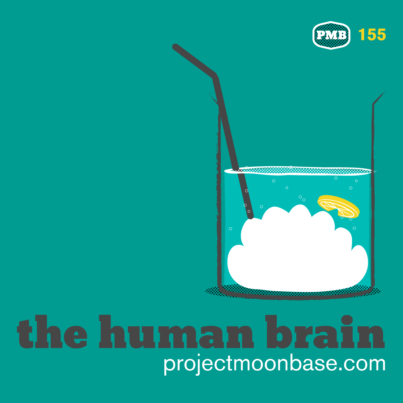 PMB155 The Human Brain