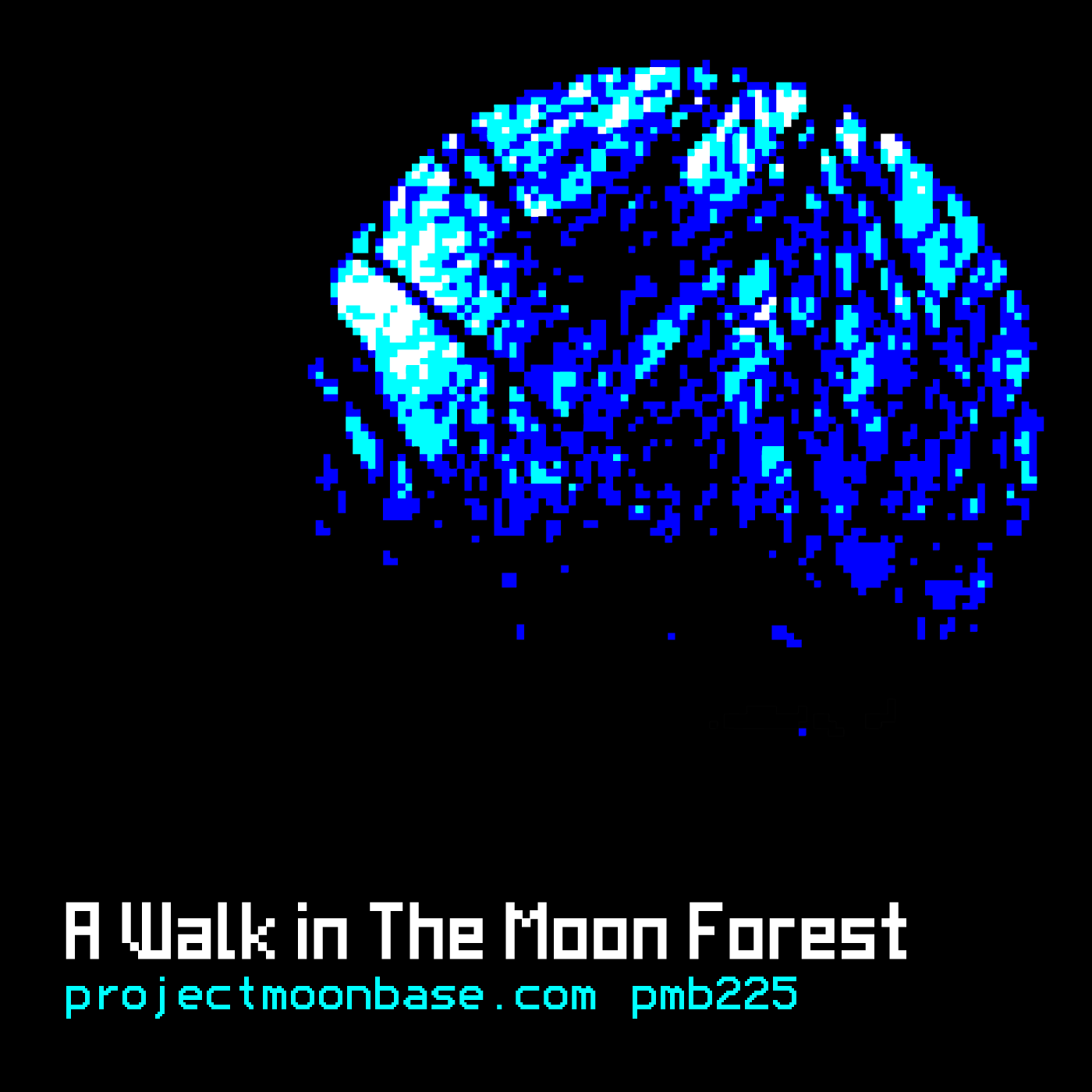 PMB225: A Walk in the Moon Forest