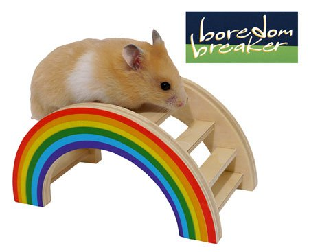 Boredom Breaker Small Animal Rainbow Play Bridge